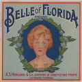 Belle of Florida