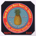 Pineapple Black