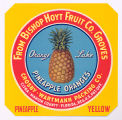 Pineapple Yellow