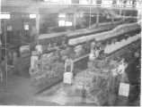 Workers in plant, bruce boxes, fruit