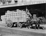 Horse-drawn wagon belonging to Costa Trucking, filled with citrus from Florida Citrus Exchange