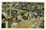 A typical packing house, Florida