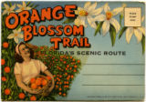 Orange blossom trail Florida's scenic route
