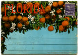 Citrus Postcards071.001a