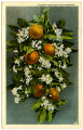 Florida oranges and blossoms