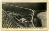 Aerial view of packing house and grove at Doctor Phillips, Florida